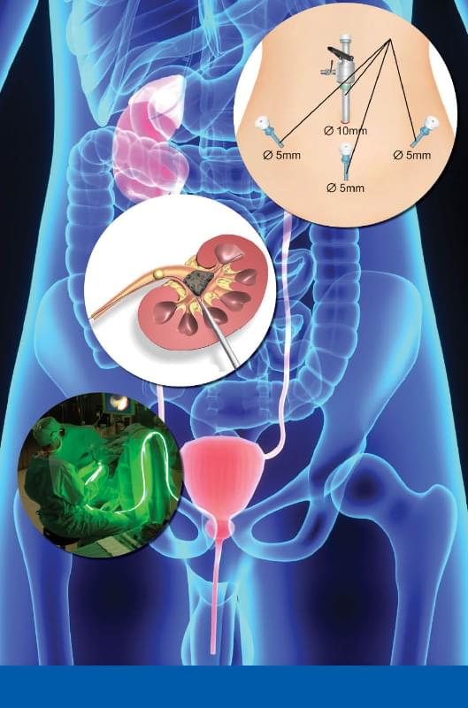 Urology Clinic - Global Health Guide