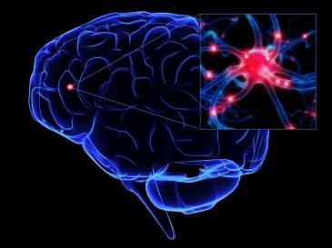 ALS (Amyotrofik Lateral Skleroz) Hastalığı Nedir ?
