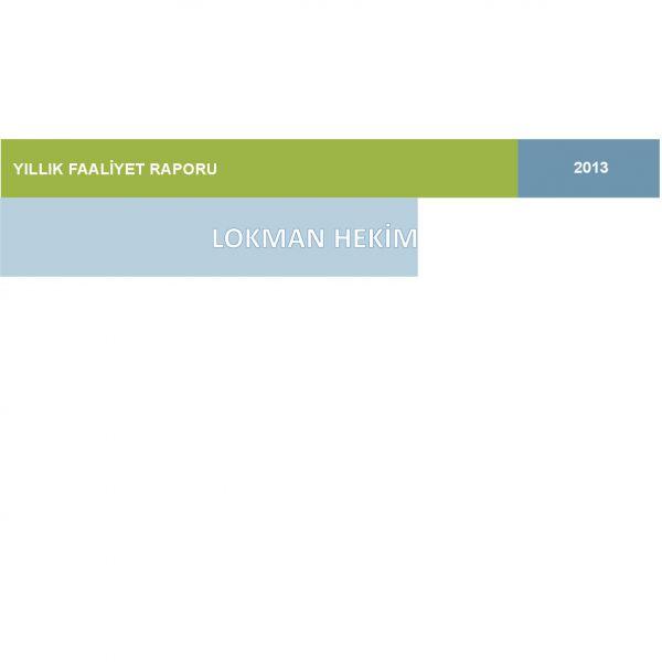 2013 - 12 Faaliyet Raporu