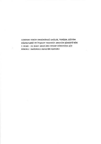 bağımsız denetim raporu 201803