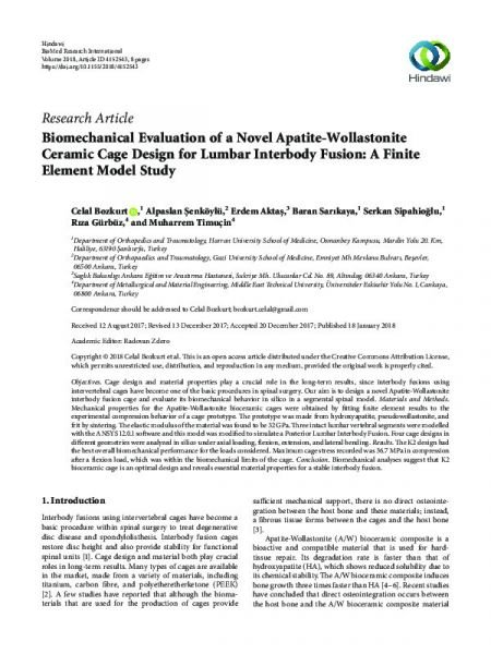 Biomechanical Evaluation of a Novel Apatite-Wollastonite Ceramic Cage Design for Lumbar Interbody Fusion: A Finite Element Model Study