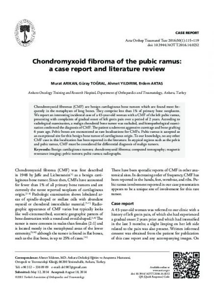 Chondromyxoid fibroma of the pubic ramus: a case report and literature review